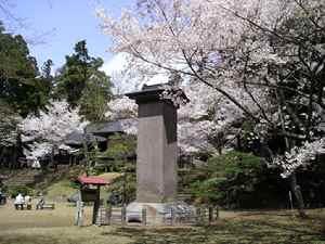 Inawasirosakura0904f